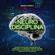 Roberto Morelli - Neuro Disciplina: Tecniche di Biohacking e Neuroscienza per aumentare la tua disciplina, costruire abitudini sane e positive, e sconfiggere la natura impulsiva e distratta del tuo cervello