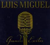 Hasta Que Me Olvides - Luis Miguel