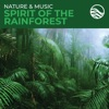 Nature Music Spirit Of The Rainforest