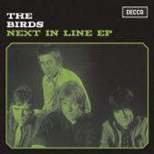 The Birds - Say Those Magic Words