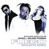 Steven Malcolm, Shaggy & Melanie Pfirrman - Fuego (The Soulbots Remix) artwork