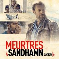 Télécharger Meurtres à Sandhamn, Saison 6 (VF) - Le prix à payer Episode 1