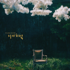 Park Bom - Spring (feat. Sandara Park)