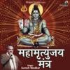Mahamrityunjay Mantra - Single