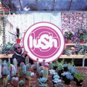 Lush - 500