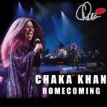 Chaka Khan - Tell Me Something Good (Live)
