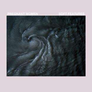 Pregnant Women - Soft Features (2019) LEAK ALBUM
