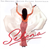 Selena - Where Did the Feeling Go? artwork