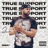 Dorian - True Support illustration