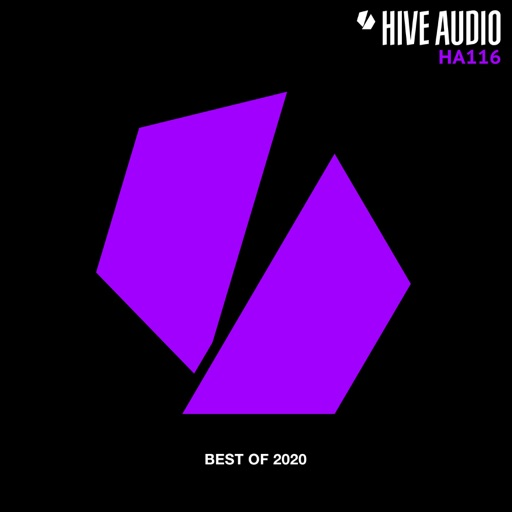 Hive Audio Best Of 2020 by Various Artists