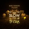Mari Ferrari & Fugo - Slow artwork