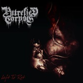 Putrefied Corpse - Procreation of the Rotten Flesh