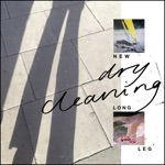 Dry Cleaning - Strong Feelings