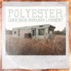 Polyester feat Miranda Lambert Single