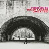 Delvon Lamarr Organ Trio - Hole in One