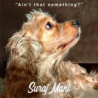 Suraj Mani - Ain't That Something? - Single artwork