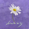 PENTAGON - Daisy  artwork