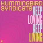 Hummingbird Syndicate - We Want Love