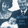 deLillos - Bare gråte artwork