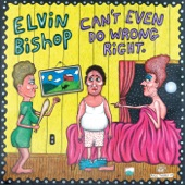 Elvin Bishop - Everybody's In The Same Boat