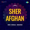 Ae Bahar E Zindagi Tum Mil Gai From Sher Afghan Single