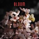 BLOOM 604 - Nrl