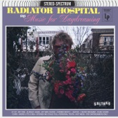 Radiator Hospital - Weird Little Idea