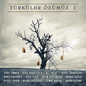 Various Artists - Türküler Özümüz, Vol. 1