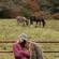 parent song - Jeremy Zucker & Chelsea Cutler