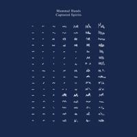 Mammal Hands - Captured Spirits artwork