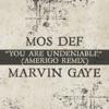 You Are Undeniable (Amerigo Remix) - Single, Mos Def & Marvin Gaye