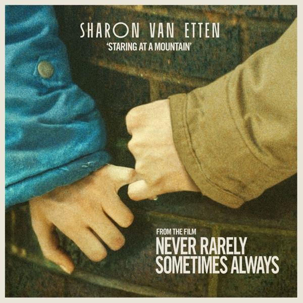 Sharon Van Etten - Staring at a Mountain