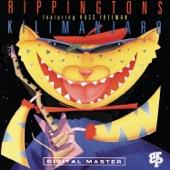 Russ Freeman;The Rippingtons - Northern Lights (Album Version)
