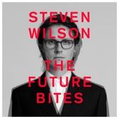 Steven Wilson - 12 THINGS I FORGOT