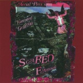 Ariel Pink's Haunted Graffiti - Politely Declined