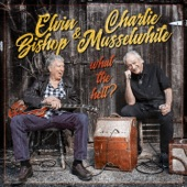 Elvin Bishop & Charlie Musselwhite - What the Hell?