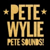 Pete Wylie - All the love