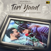 Teri Yaad (feat. Anita Hassanandani Reddy & Rohit Reddy) - Single