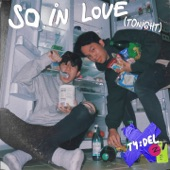 so in love (tonight) artwork