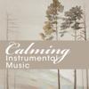 Various Artists - Calming Instrumental Music artwork
