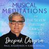 Musical Meditations on The Seven Spiritual Laws of Success - Deepak Chopra, Paul Avgerinos & Kabir Sehgal