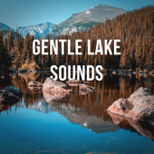1 Hour of Gentle Lake Sounds to Calm Down and Relax