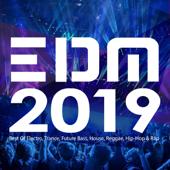 EDM 2019: Best Of Electro, Trance, Future Bass, House, Reggae, Hip Hop & Rap-Various Artists