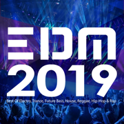 EDM 2019: Best of Electro, Trance, Future Bass, House, Reggae, Hip-Hop & Rap - Various Artists - Various Artists