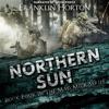 Franklin Horton - Northern Sun: Book Four in The Mad Mick Series (Unabridged)  artwork