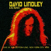 David Lindley - Twist And Shout