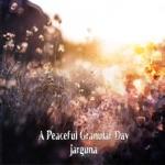 Jarguna - A Peaceful Granular Day