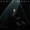Robin Schulz - All We Got (feat. KIDDO) Grafik