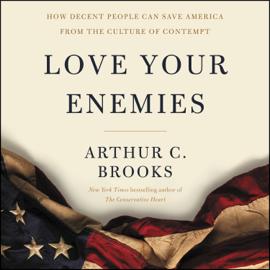 Love Your Enemies audiobook