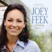 Joey Feek - When The Needle Hit The Vinyl